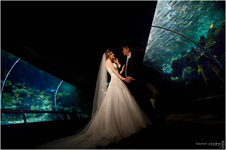 The Florida Aquarium Wedding Photos Tampa, Florida